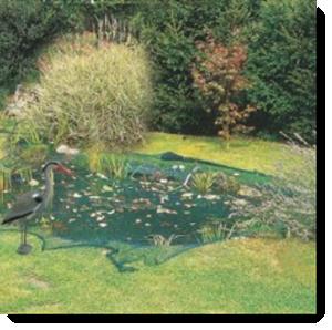 Teich vor Herbstlaub schützen